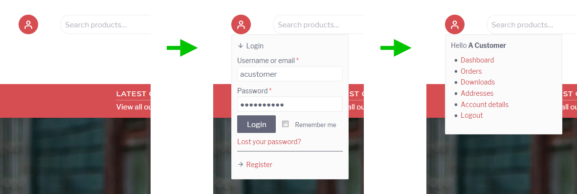 A screenshot showing the WooCommerce login/account form in the header area of the Retail WordPress theme